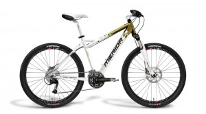 Merida Juliet TFS 100-D gold